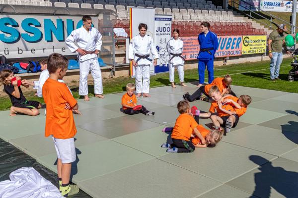 Judo (© Unterberger)